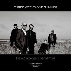 Three Weeks One Summer